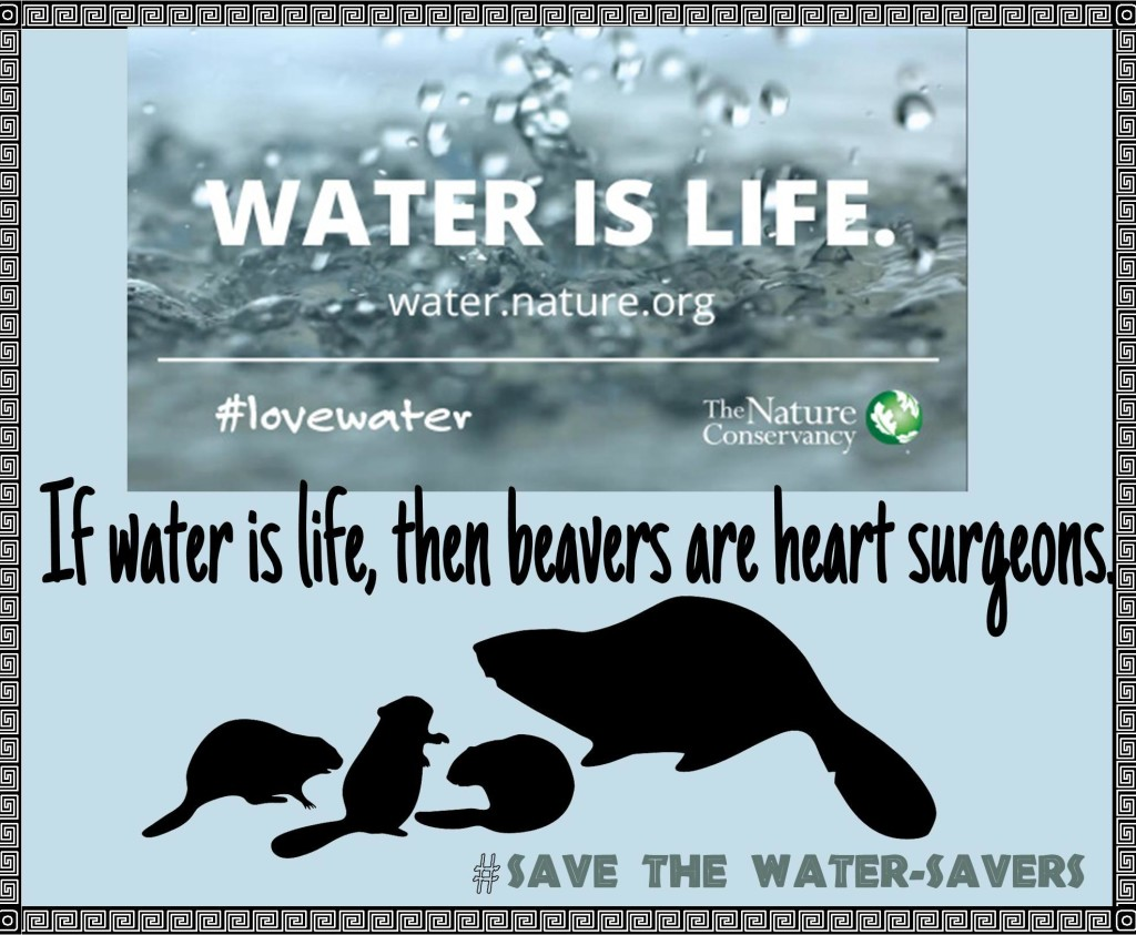 If water is life